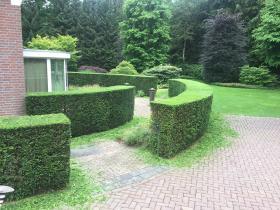 de-griesel-tuinonderhoud-1